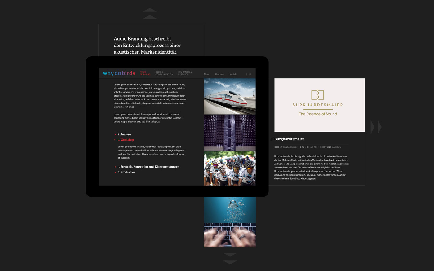 whydobirds-website-konzept2